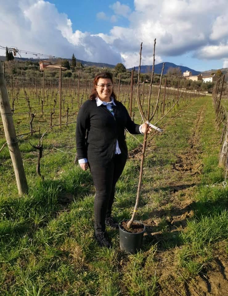 Veneto. Le donne del vino piantano un albero in segno di speranza e sostenibilità. 1-14 marzo 2020