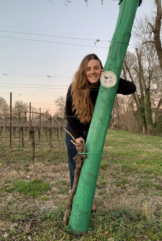"""""""Vite è Vita"""" festa delle Donne del Vino Veneto marzo 2021"""
